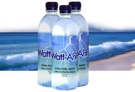AquaNew's Watt-Ahh® ultra-pure Polarized Water